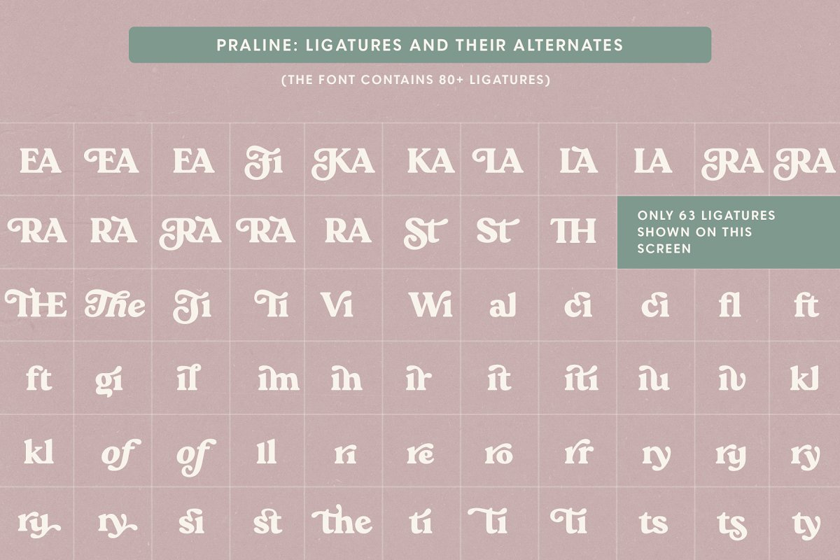 Praline Font Family in Serif Fonts - product preview 19