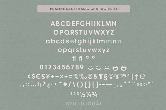 Praline Font Family in Serif Fonts - product preview 21
