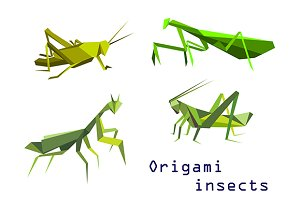 Green origami grasshoppers and manti