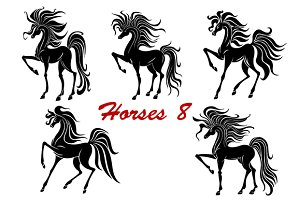 Black horse stallions set
