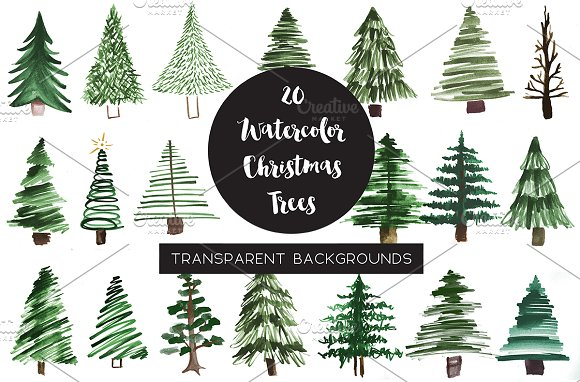 Watercolor Pine Tree Clipart