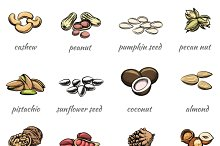 Vector nuts icons