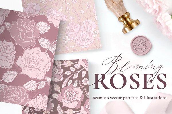 Rose Flower Patterns & Illustrations