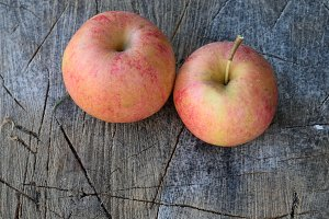 Organic Apples on Splitting Block