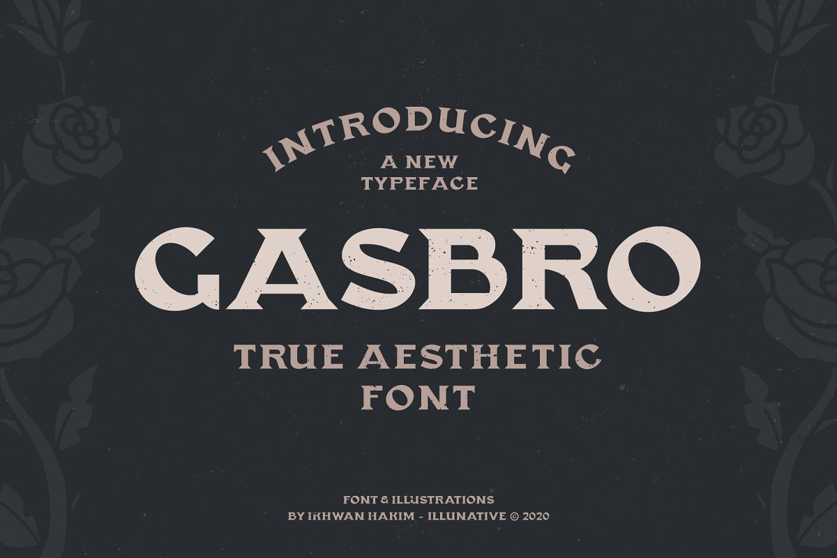 Gasbro Family Font in Serif Fonts