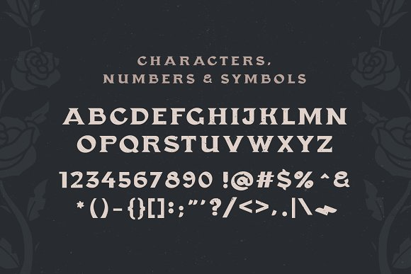 Gasbro Family Font in Serif Fonts - product preview 1