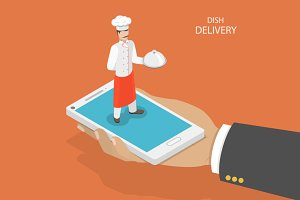 Dish fast delivery