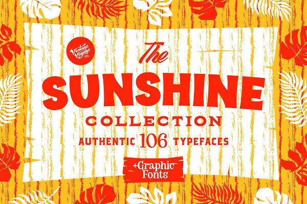The Sunshine Collection • 60% OFF