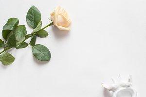 Beautiful white mock up background