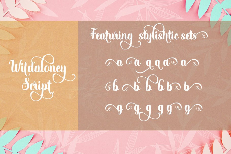 Best Wildaloney Script Vector