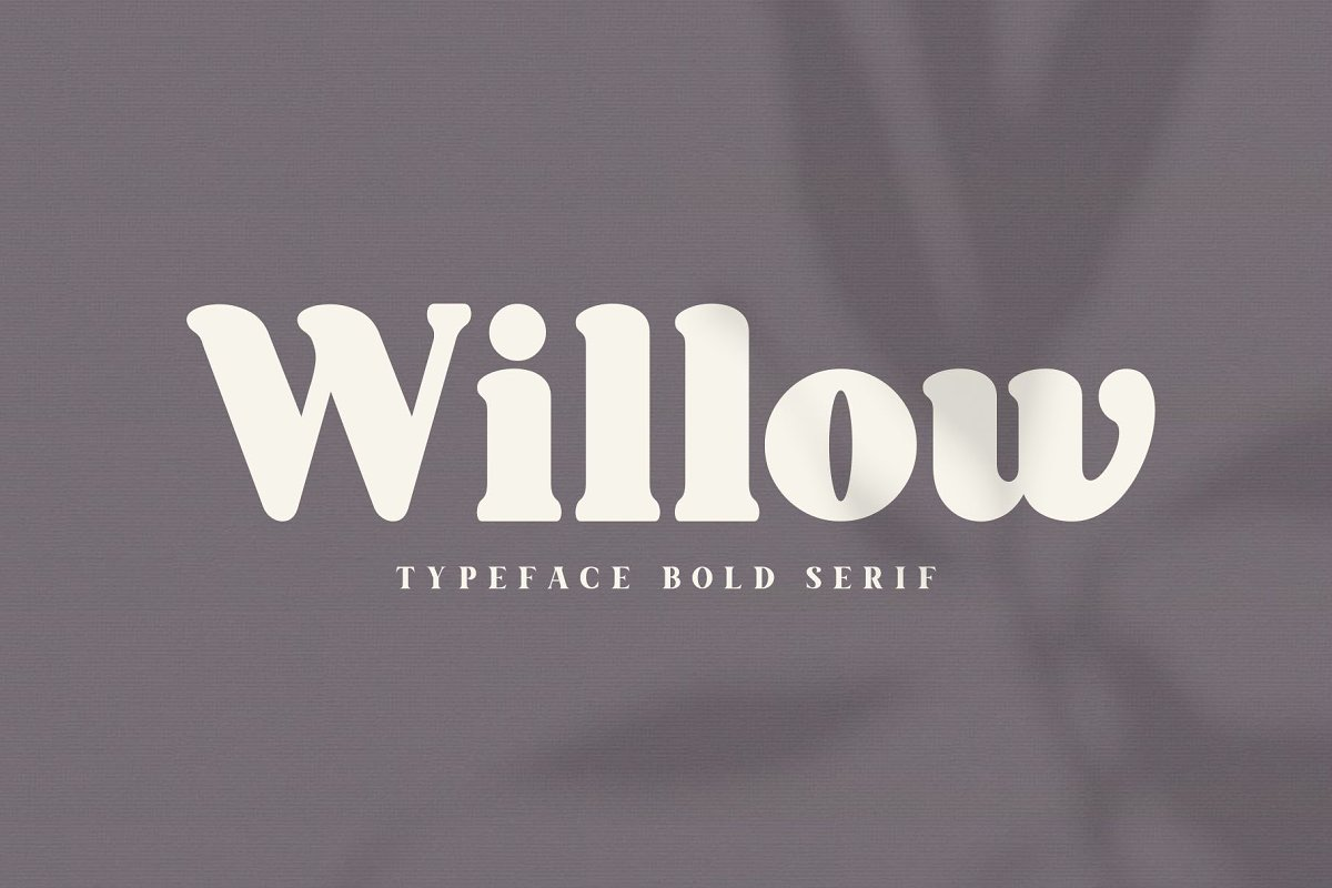 Willow. Typeface Bold Serif