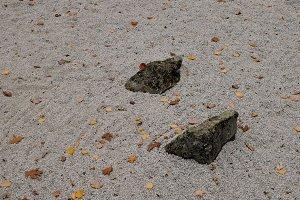 Zen Garden with Fallen Leaves