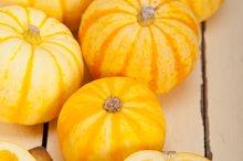 baby pumpkins 011.jpg