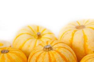 baby pumpkins 006.jpg