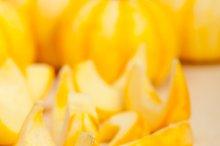baby pumpkins 024.jpg