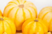 baby pumpkins 029.jpg