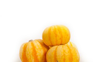 baby pumpkins 042.jpg