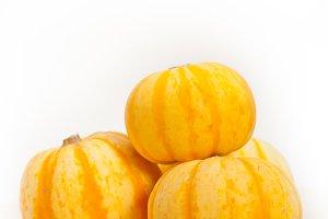 baby pumpkins 043.jpg