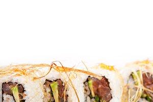 japanese sushi 060.jpg