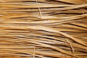 Background of palm straw