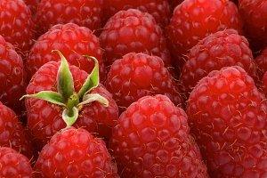 Perfect Ripe Raspberries Background