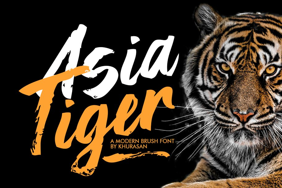 Best Asia Tiger Brush Font Vector