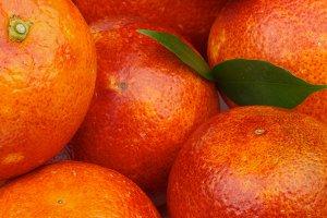 Blood Oranges Background