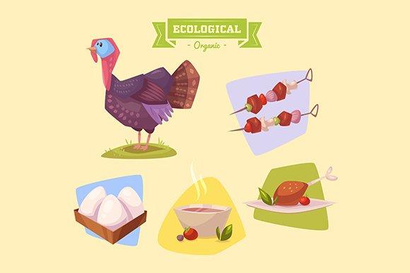 Cute farm turkey. Vector - Objects