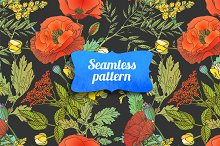 Floral seamless pattern. Vector