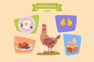 Cute chiken farm animals. Vector