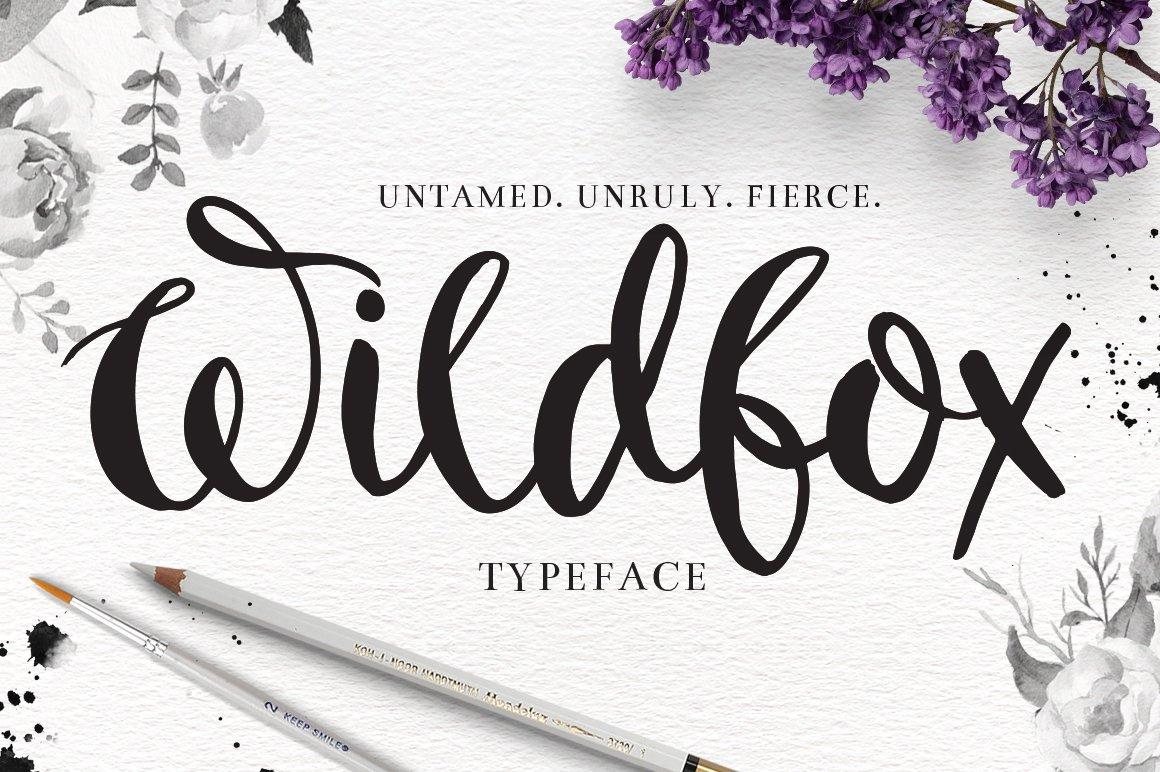 Wildfox Typeface Hand Drawn Font Script Fonts Creative Market