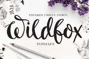 """Wildfox"" Typeface-Hand drawn font"