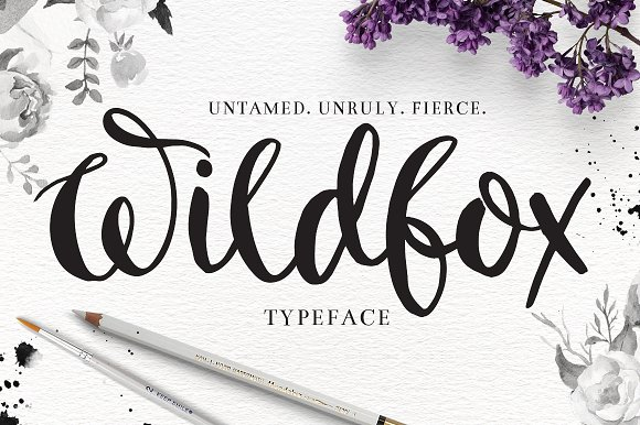 Wildfox Typeface Hand Drawn Font Script Fonts On