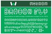 Dragon Fly Font