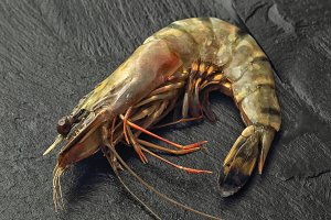 Raw Giant Prawn