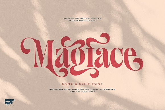 Magface in Serif Fonts - product preview 21