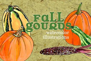 Fall Gourd Illustrations