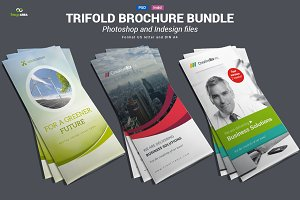 Bundle of Trifold Brochures