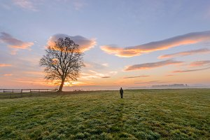 Man and the tree at sunrise