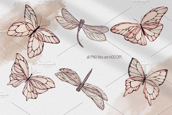 Butterflies charming