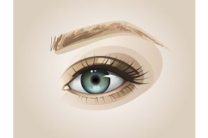 Realistic Eye - Vector Illustration