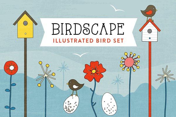 BirdScape bird illustrations