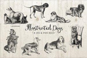 Vintage Dog Graphic Illustration PNG