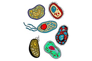 Amebas, amoebas, microbes and germs