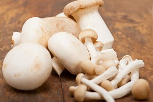 mushrooms 004.jpg