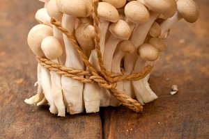 mushrooms 020.jpg