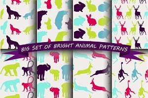 Colorful animal stickers.