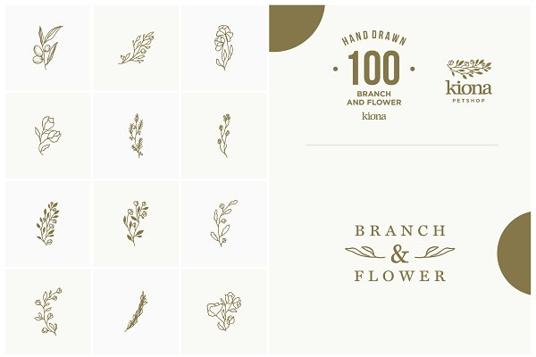 Hand Drawn Branch and Flower (VOL 2)