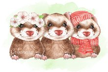 Ferrets. Watercolor clipart