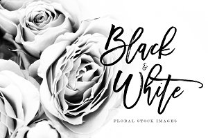 14 Black & White Floral Stock Images